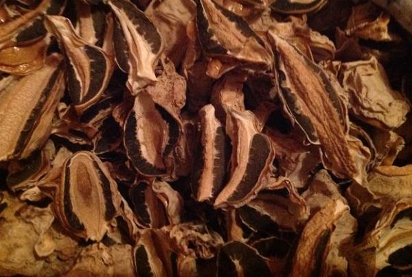 Гриб веселка: лечебные свойства, как принимать? Гриб веселка — применение в народной медицине при онкологии, псориазе, диабете, мастопатии, варикозе, для суставов