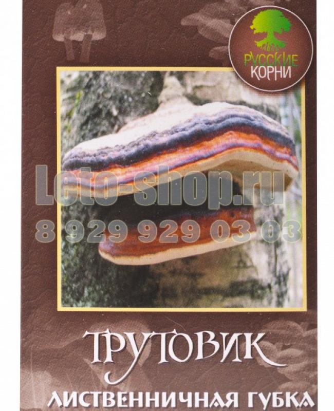 гриб трутовик для лечения простатита